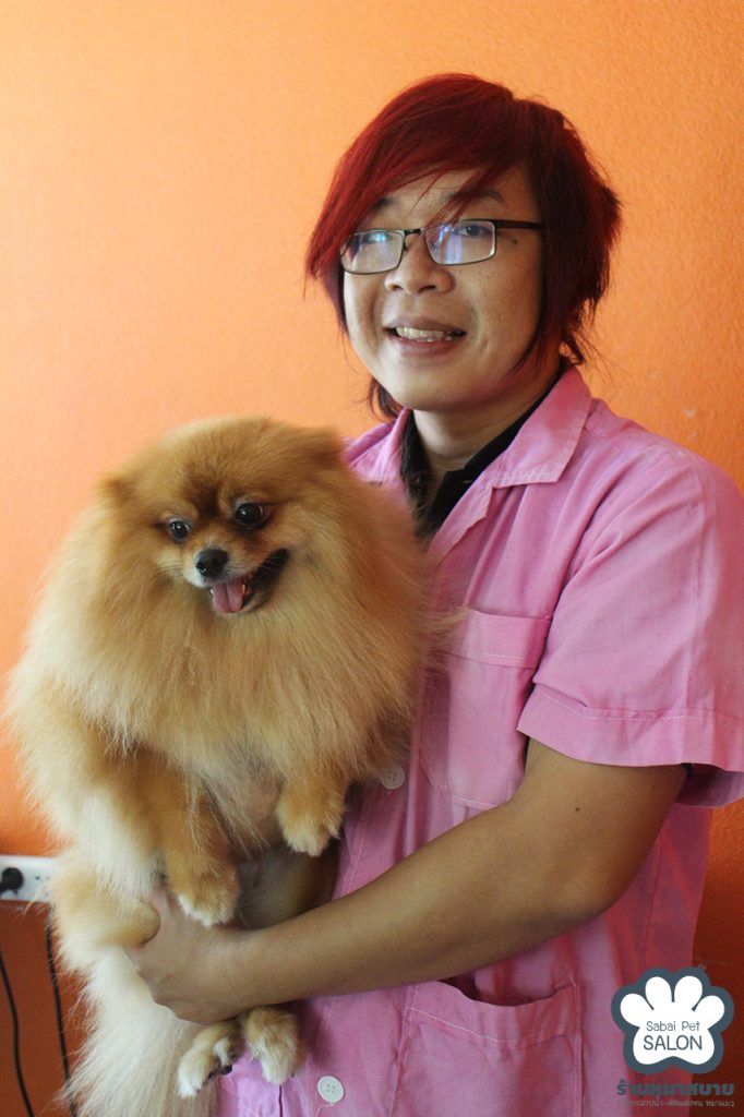 Pet Grooming Services Chiang Mai